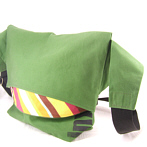 Green Messengerbag, convertible