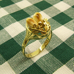 "Golden Ring ""Waltraud"" Grandl-Style, 333 gold"